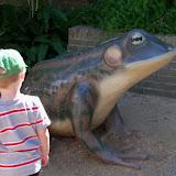 Houston Zoo - 116_8395.JPG