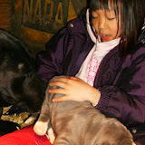 Star & True Blues February 21, 2008 Litter - HPIM1022.JPG