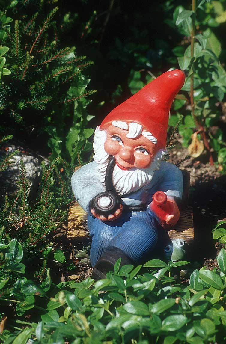 All things Fett: Weird Stuff I Need. Gnome Wars.