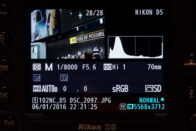 Những bức ảnh mới của trang Radorn sẽ giúp bạn hình dung được chất lượng ảnh chụp trên mức ISO siêu cao của Nikon D5.
