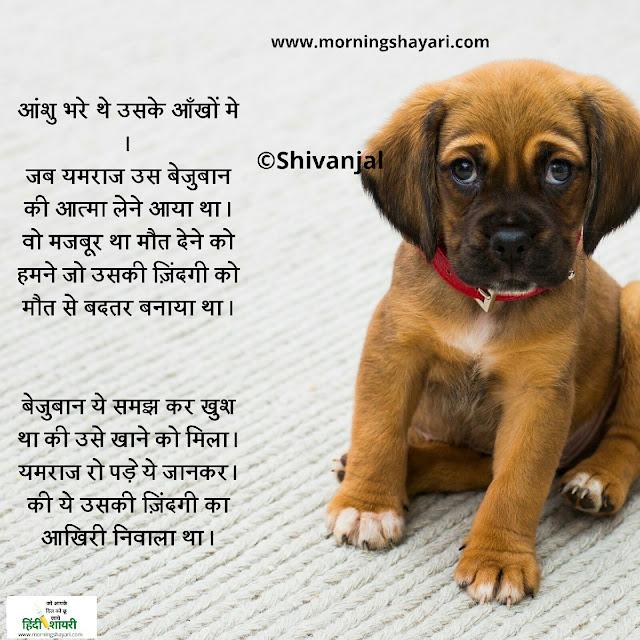 Tears hindi shayri image shayri image sad shayri image love shayari photo