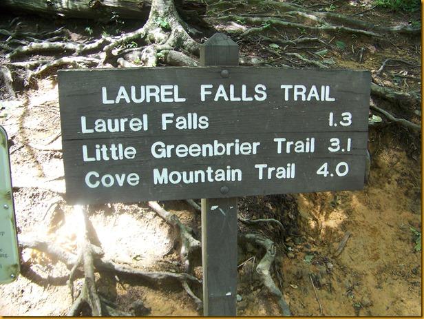 Laurel Falls (1)