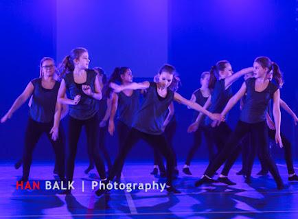 Han Balk Voorster Dansdag 2016-4175.jpg