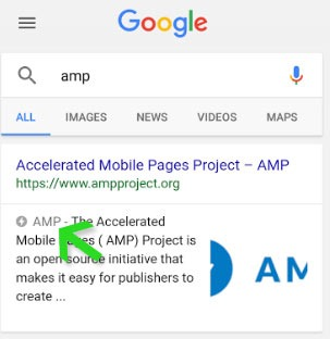 amp-icon-in-search-results