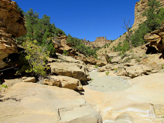Blind Canyon above the narrows