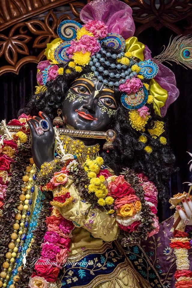 ISKCON Mayapur Deity Darshan 02 Feb 2016 (14)