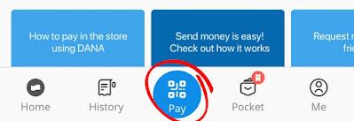 Pay DANA