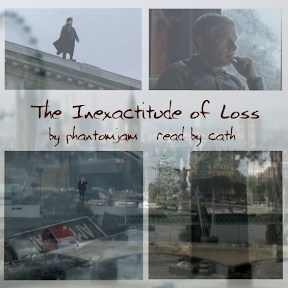 inexactitude of loss podcover
