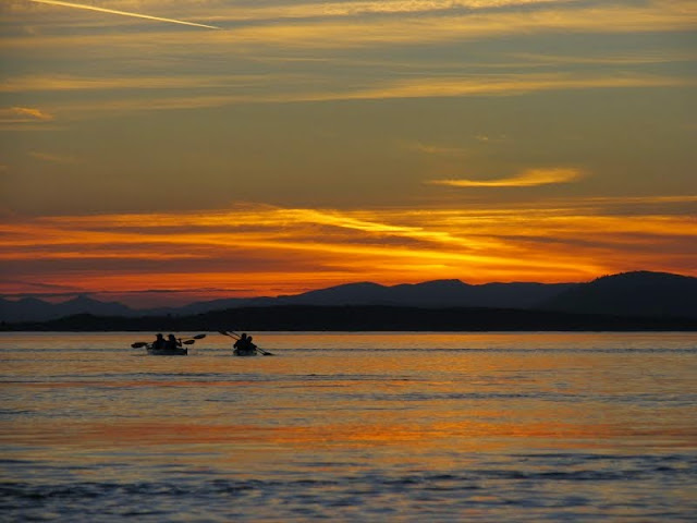 Paddlers glide across the water by the light of the setting sun and experience the serenity and wildlife of evening on Bellingham Bay.Credit: Peter James