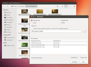 Renamer in Nautilus su Ubuntu 13.04