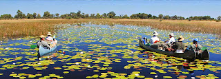 Eden od vrhuncev bo tudi celodnevni izlet na delto Okavanga