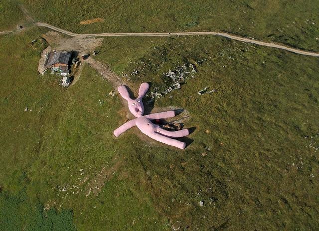 O coelho rosa gigante de Colleto Fava
