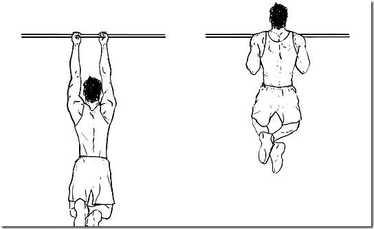 Close Grip Chin-ups