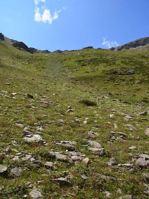 Biotope de Parnassius (Driopa) nordmanni. Cheget (Terskol), 2750 m (Kabardino-Balkarie), 12 août 2014. Photo : J. Michel