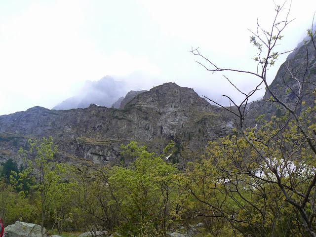 Zajęcia terenowe w Tatrzańskim Parku Narodowym - P1610614.JPG