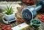 Набір суперфудів для здорового життя