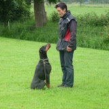 Angel's-Ice Van Avendia  (13-06-2003- 04-02-2014)