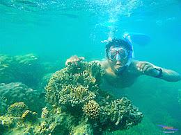 Pulau Harapan, 16-17 Mei 2015 Olympus  24