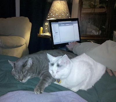 You can still reach your keyboard, don't mind us.... (Copernicus and Syra)