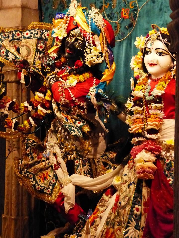 ISKCON New Govardhan Deity Darshan 12 Mar 2016 (21)