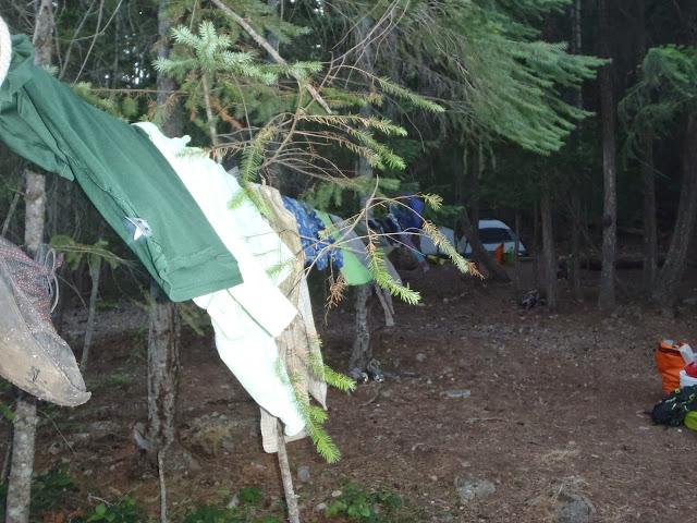 Ross Lake July 2014 - P7110147.JPG