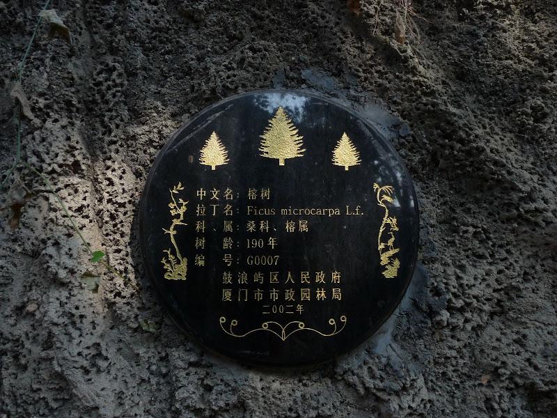 Chine .Fujian Gulang yu island 3 - P1020682.JPG