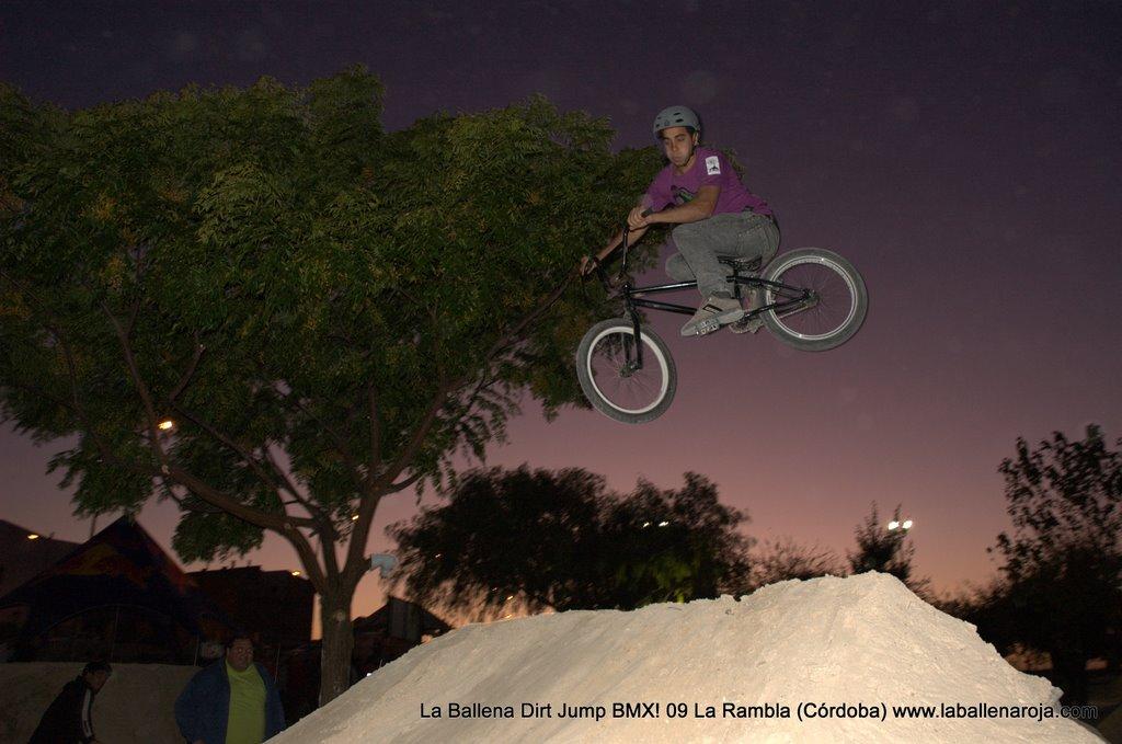 Ballena Dirt Jump BMX 2009 - BMX_09_0172.jpg