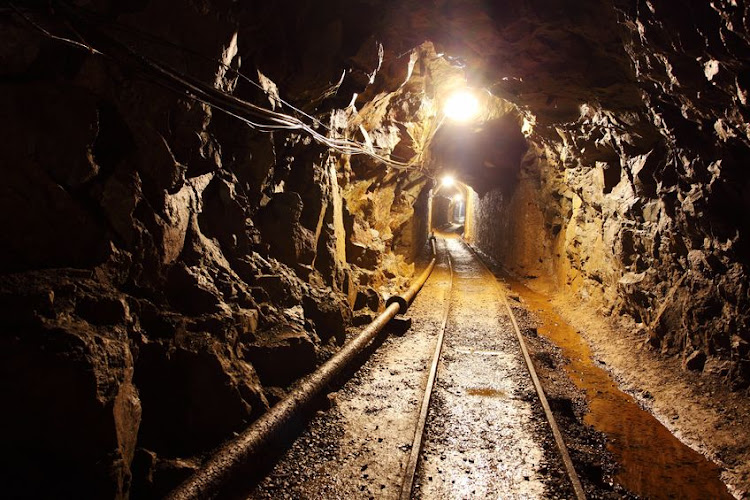 Seven more bodies were found underground at the Gupta-owned mine in Mpumalanga on Monday. File photo.