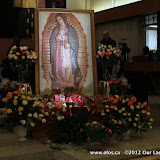 La Virgen de Guadalupe 2011 - IMG_7391.JPG