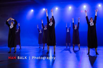 Han Balk Voorster Dansdag 2016-4112-2.jpg