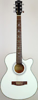 Martin Smith Electro-Acoustic Guitar