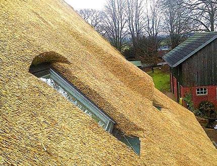 Widok kawałka trzcinowego dachu
