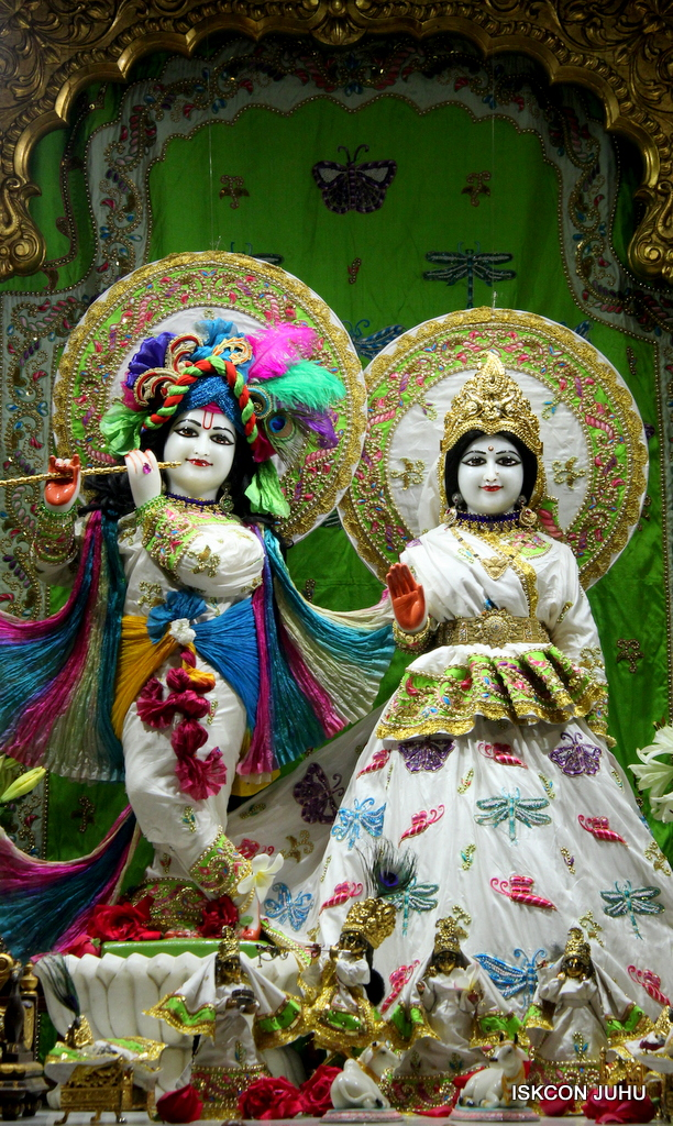 ISKCON Juhu Mangal Deity Darshan on 1st Jan 2016 (25)