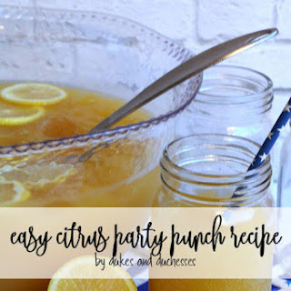 Citrus Punch Ginger Ale Recipes