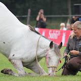 Paard & Erfgoed 2 sept. 2012 (18 van 139)