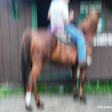 2013-07-11 - DSC_0416.JPG