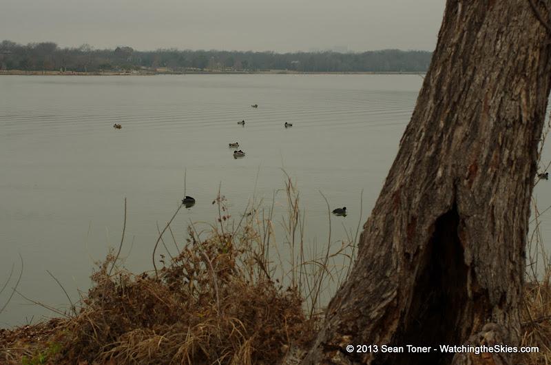 01-26-13 White Rock Lake - IMGP4347.JPG
