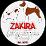 Zakira Jack Russell Terrier's profile photo
