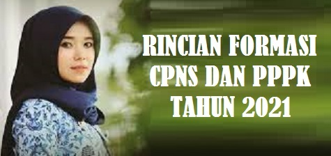 Link Download Pengumuman Formasi CPNS dan PPPK Tahun 2021