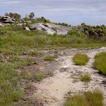 Rocky outcrop (35975)