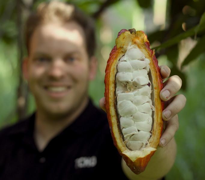 Photo: Chief Chocolate Maker, Brad Kintzer, proudly displays a fresh Peru pod.