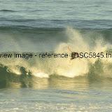 _DSC5845.thumb.jpg