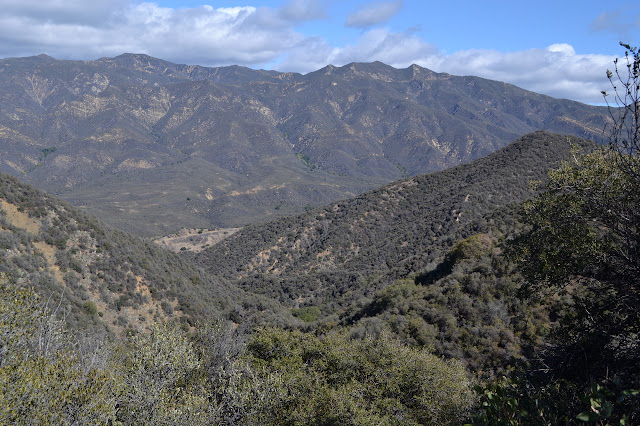 Monte Arido