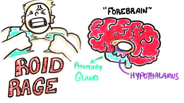 """Steroids can also lead to the classic """"Roid Rage"""""""