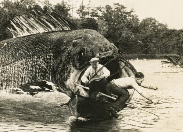 Uma tall tale mostrando um peixe gigantesco