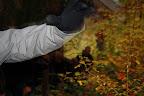 Abdijweekend Orval met Jona - 3110 - 211 '09 / beetje arm