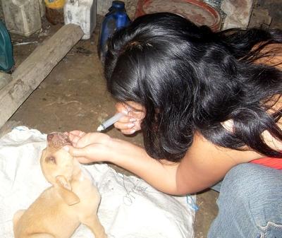 m_saritachanchamayo2010 (31)