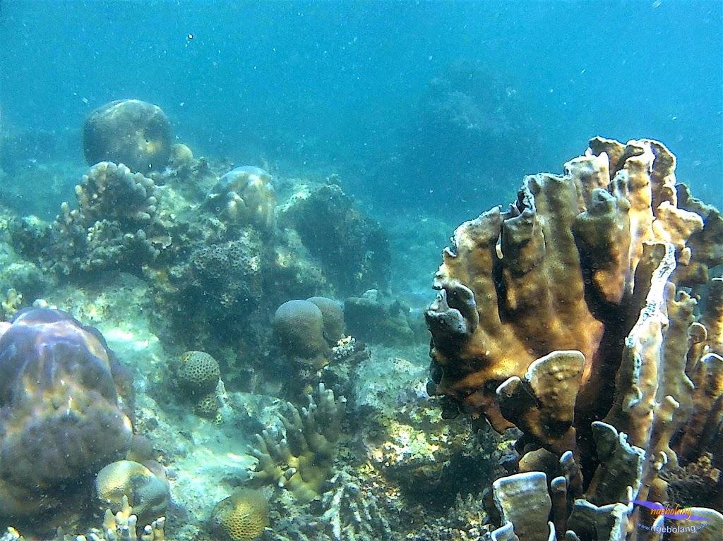 Pulau Harapan, 23-24 Mei 2015 GoPro 36