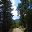 cannell_trail_IMG_1837.jpg
