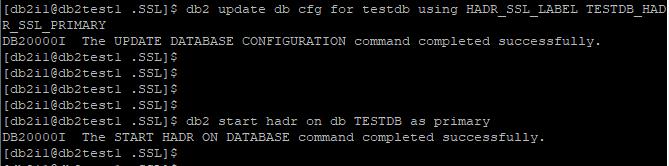 Update DB CFG and Start HADR
